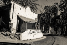 DPB_1955